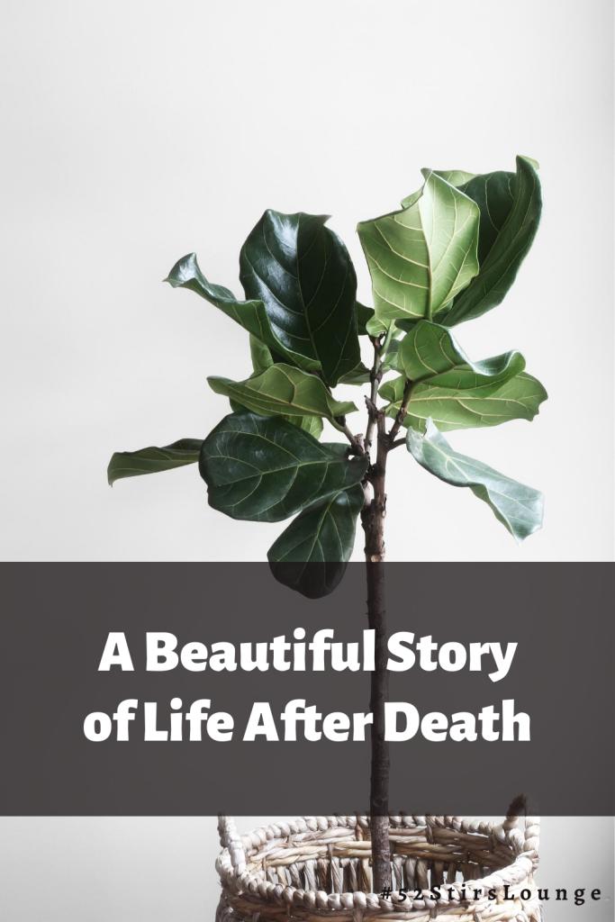 Life after Death - 52StirsLounge