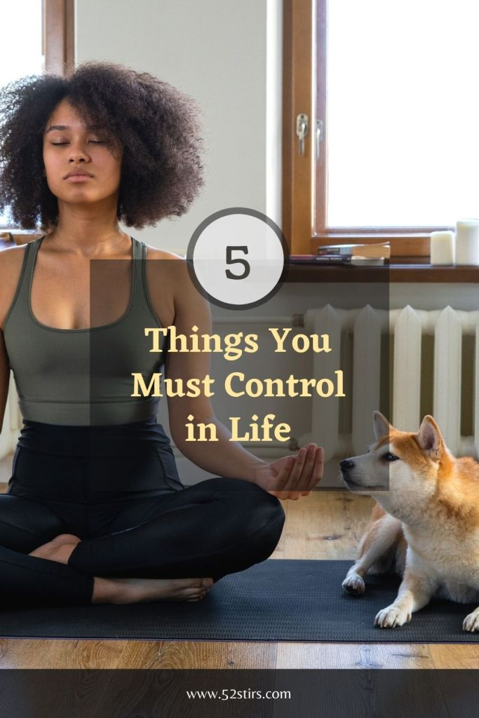 Things You Must Control in Life - 52StirsLounge